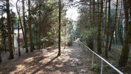 Der Park auf der Anlage
